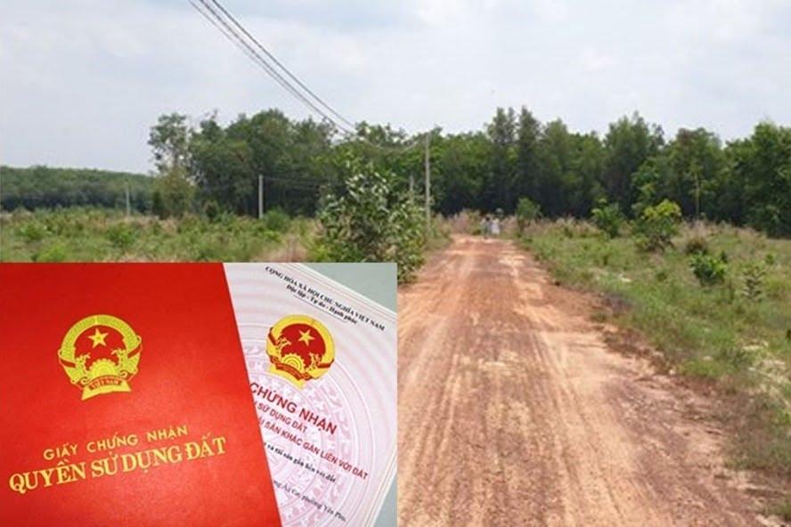 Cách ghi mục đích sử dụng đất trên sổ đỏ